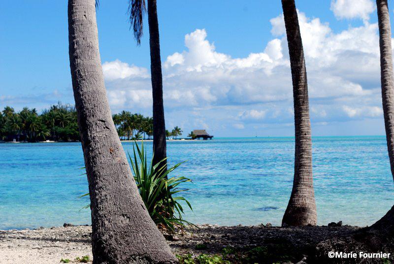LA POLYNESIE FRANCAISE - Tahiti, Bora-Bora, Raiatea…